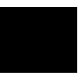 bwf-logo2